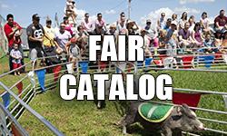fair-catalog -2021